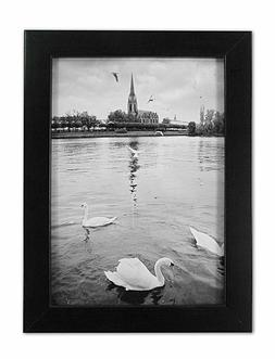 Golden State Art, 8x10 Ebony Black Color Wood Swan Photo Fra