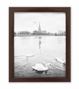 Golden State Art, 8x10 Walnut Color Wood Swan Photo Frame wi
