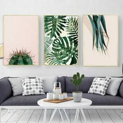 Cactus Plant Canvas Prints Posters And Prints Wall Pictures