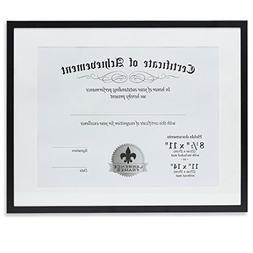 Lawrence Frames Dual Use Aluminum Document Frame, 11 by 14-I