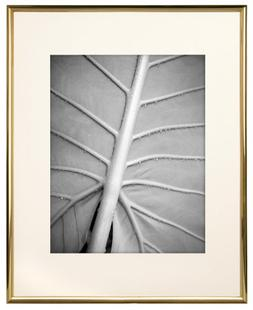 MCS Gallery Gold Coloured Aluminum 11 by 14-Inch Frame with