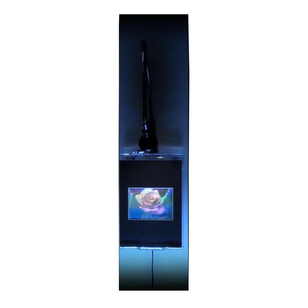 blooming rose large hologram picture lighted wall